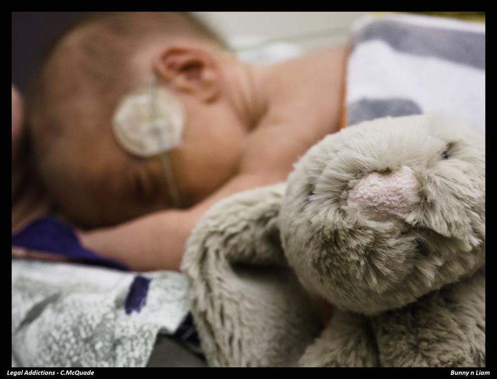 his+bunny-.jpg