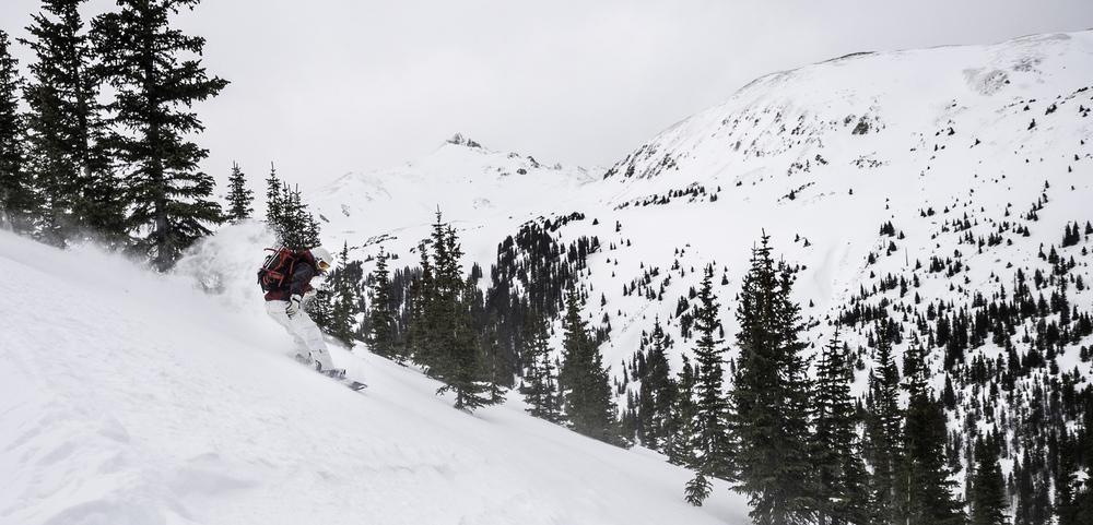 Mt. Trelease's NE face terrain - Drew
