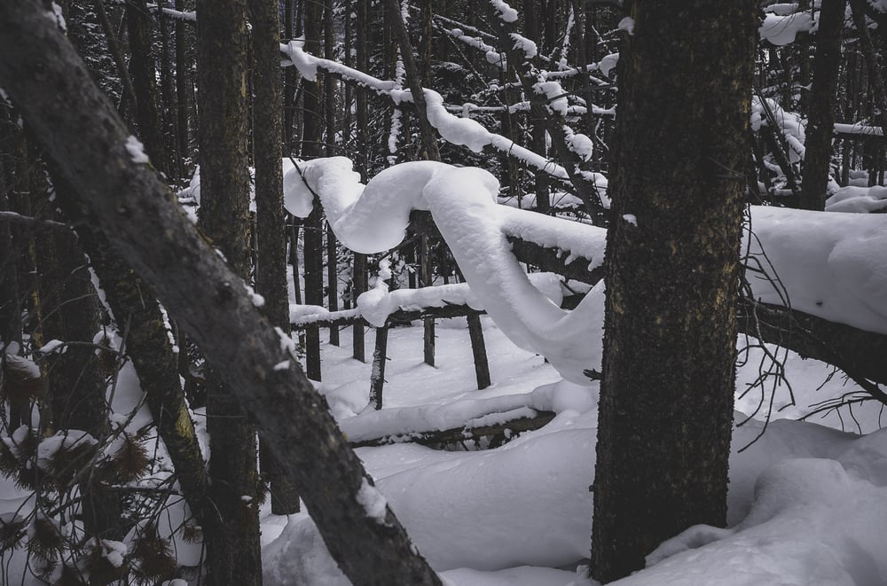 Tensile Strength - Snow Bonding at its best