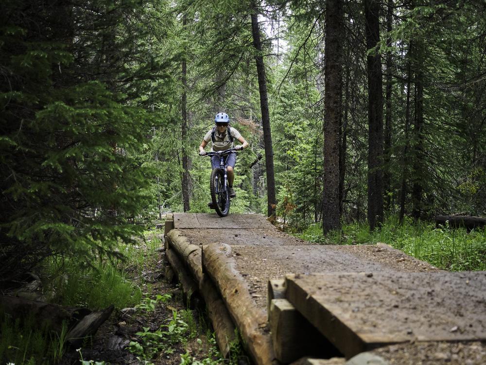 Elevated Trail - Peaks Trail