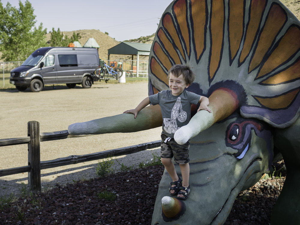 This Boy Loves His Dino's - Dinosaur, CO