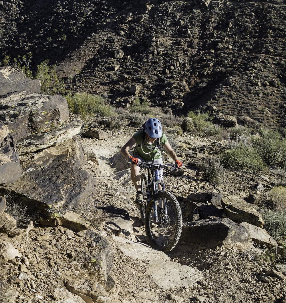 Sidewinder Trail - Santa Clara, UT