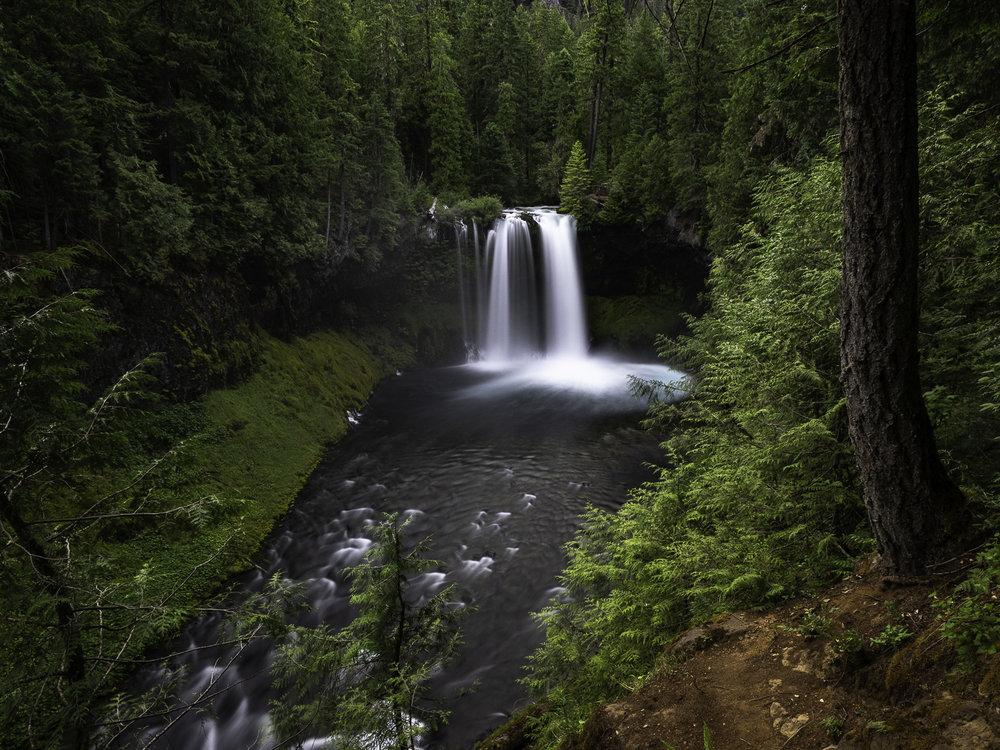 Koosah Falls - McKenzie River, OR