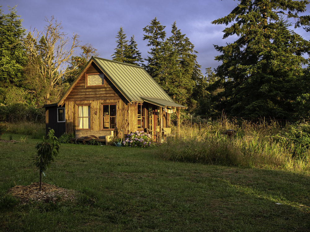 Frog Song Cabin - Plum Nelli