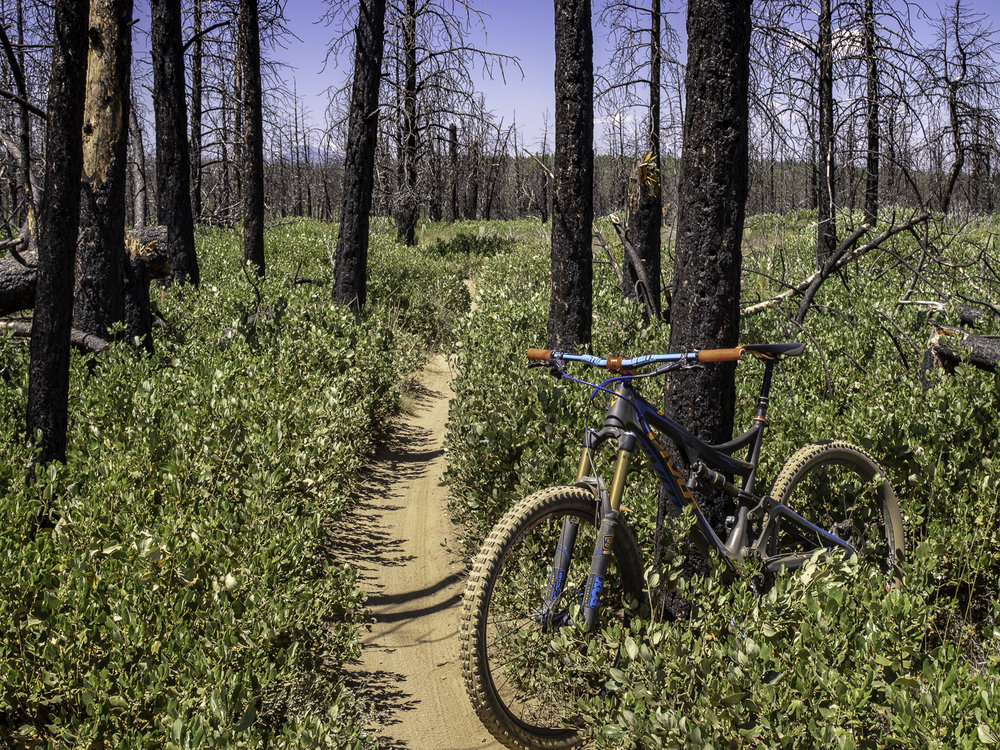 Mrazek Trail - Bend, OR