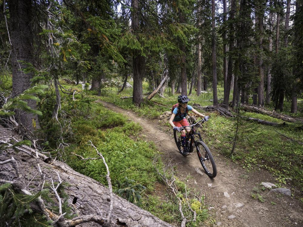 Divide Trail - Rabbit Ears Pass, CO