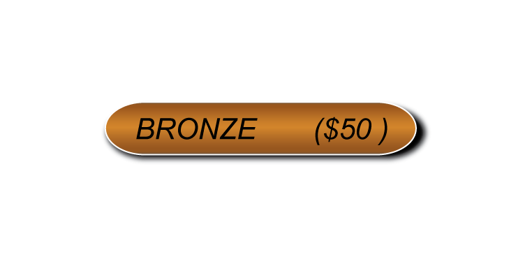 Bronze Sponsorship (No check).png