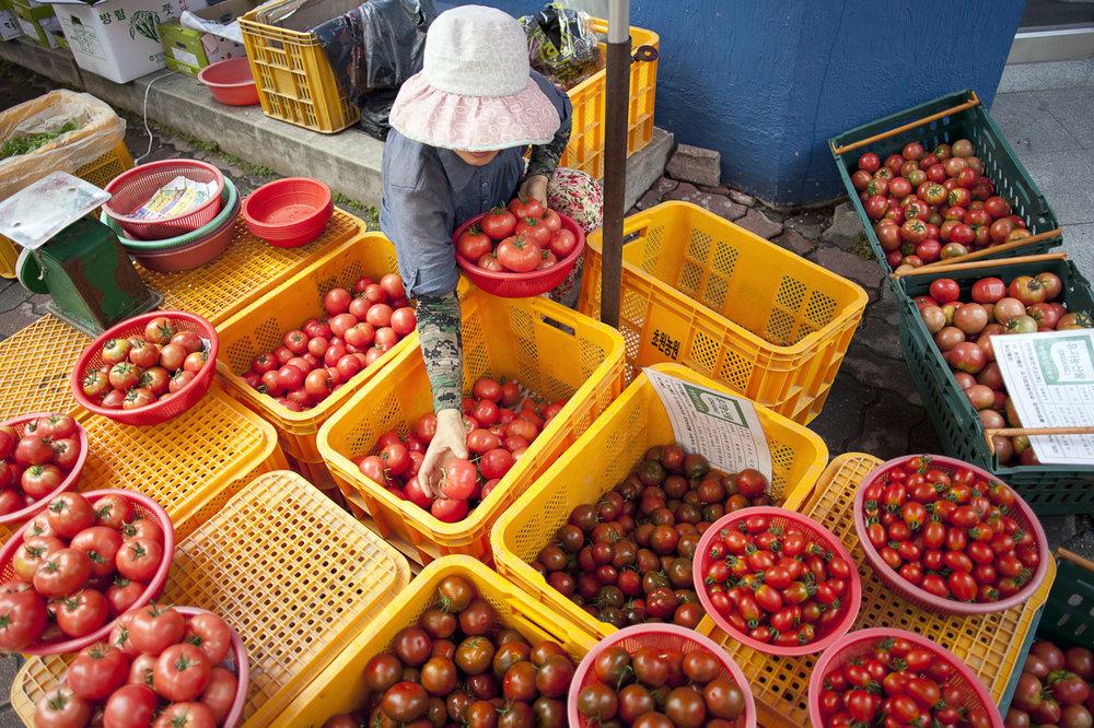 Tomato Vendor