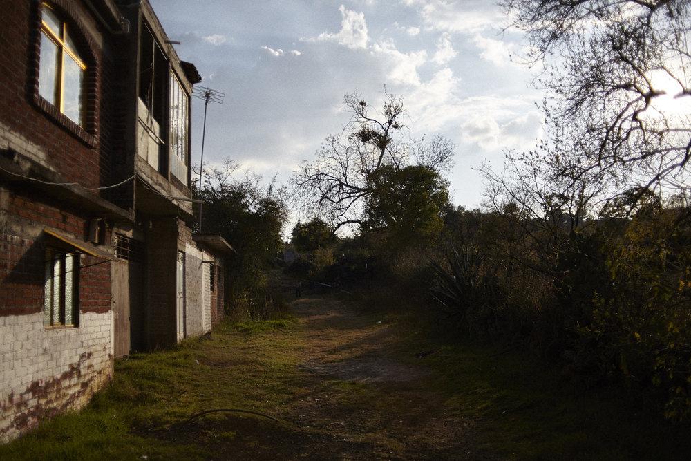 Grassy Village