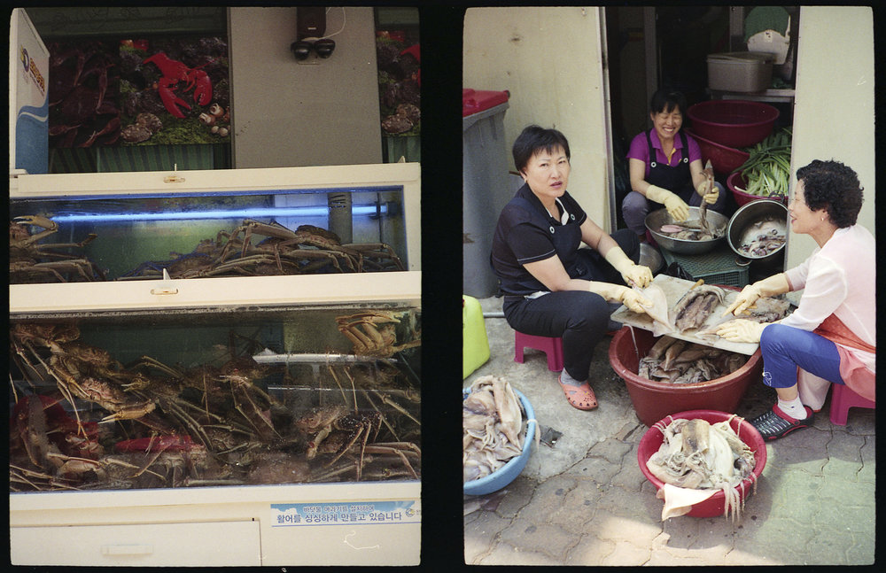 Crabs and Squid Preparation