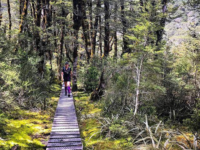 Beautiful day exploring Arthur's Pass.  #trailrunning #coasttocoast #arthurspass #goatspass