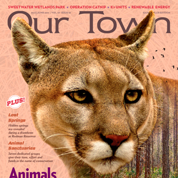 ourtown-cover