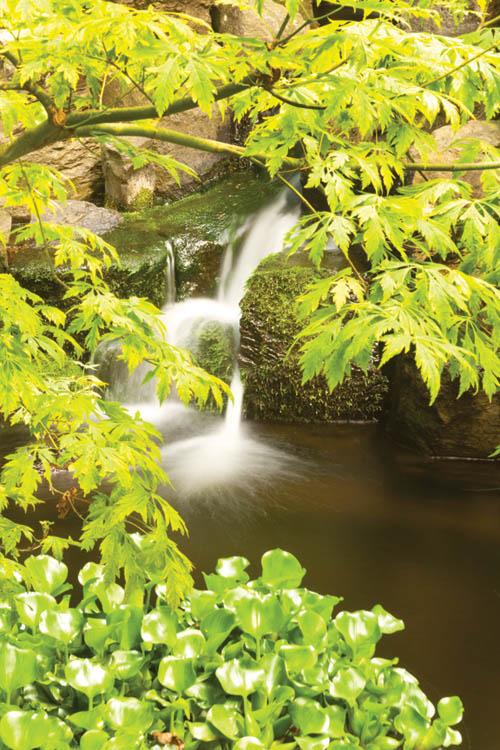 潺潺流水演奏出動人的天籟之音,帶來了心靈的寧靜。
