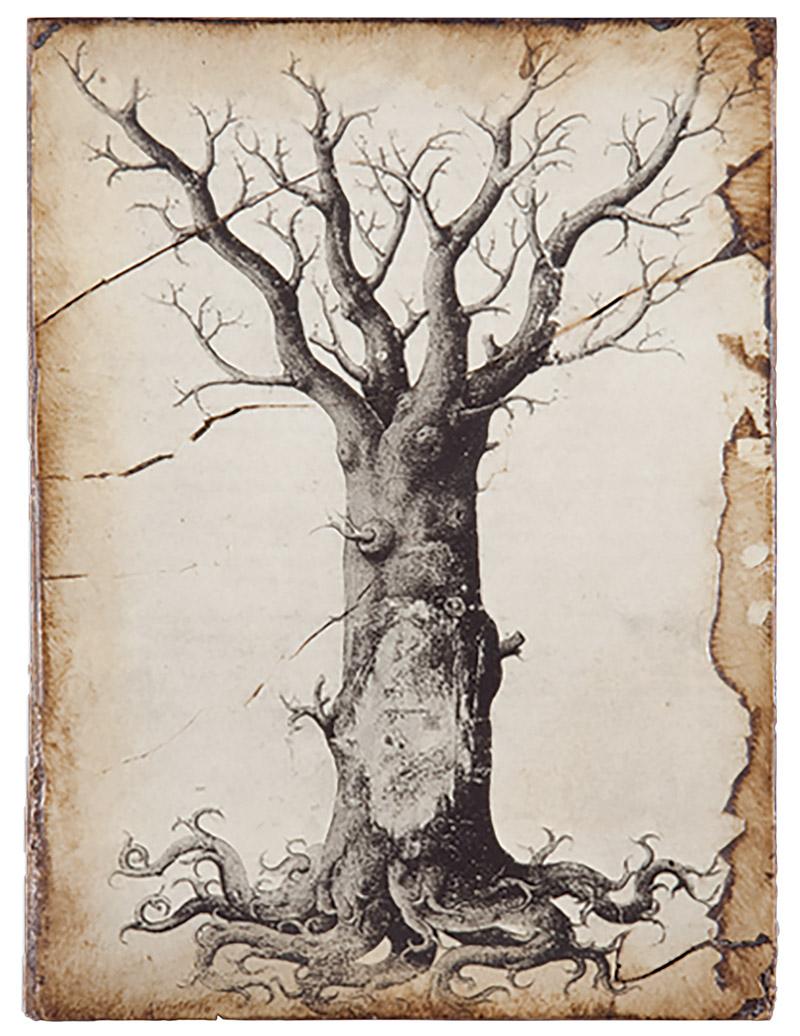 生命之樹裝飾畫