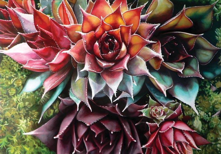 "Madeleine不同時期的油畫創作。從上圖順時針方向分別創作於2006年,Succulents 2006, oil on canvas, 36 x 60"""