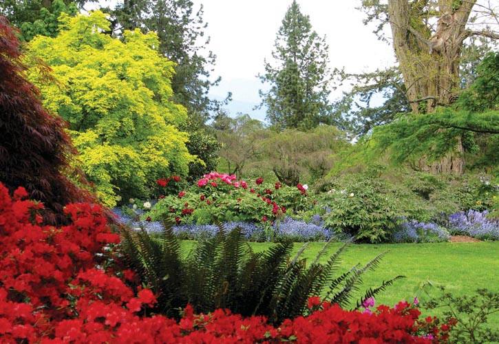 春天VanDusen植物園美麗的草坪和各種植物與花朵