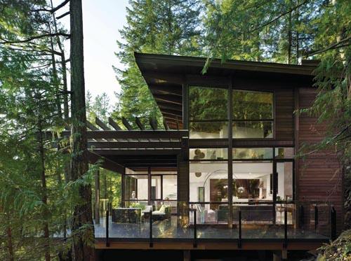 雅緻的木質樑柱式建築與室外的原始叢林自然銜接。