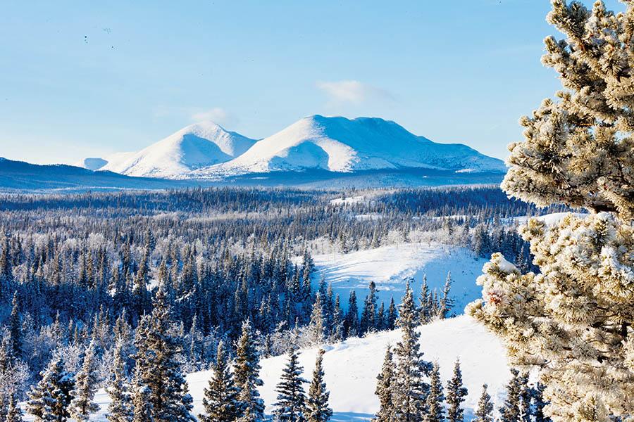 育空地區彌漫著寒意,卻有着蒼涼又奇妙的美。(Pi-Lens/Shutterstock.com)