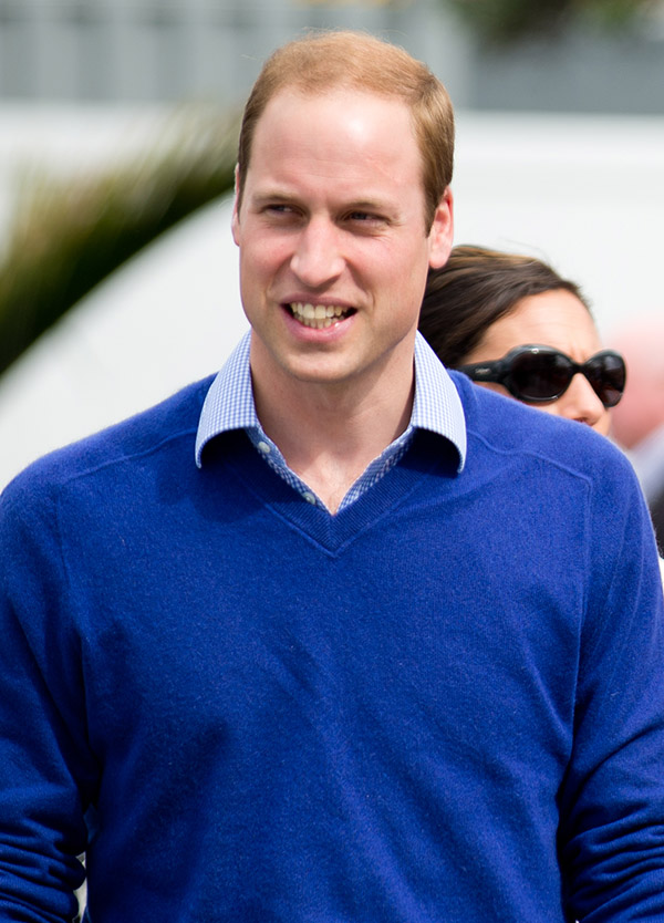 Prince William(Shaun Jeffers / Shutterstock.com)