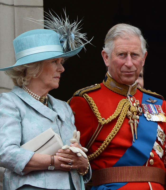 Camilla Duchess of Cornwall and Charles, the Prince of Wales: Featureflash / Shutterstock.com