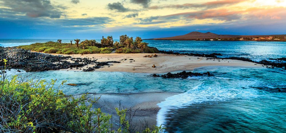下圖:加拉帕戈斯群島是因太平洋大陸板塊移動,造成火山噴發後形成的。最近的一次噴發是在2009年,共噴發了13次。RHG / Shutterstock.com