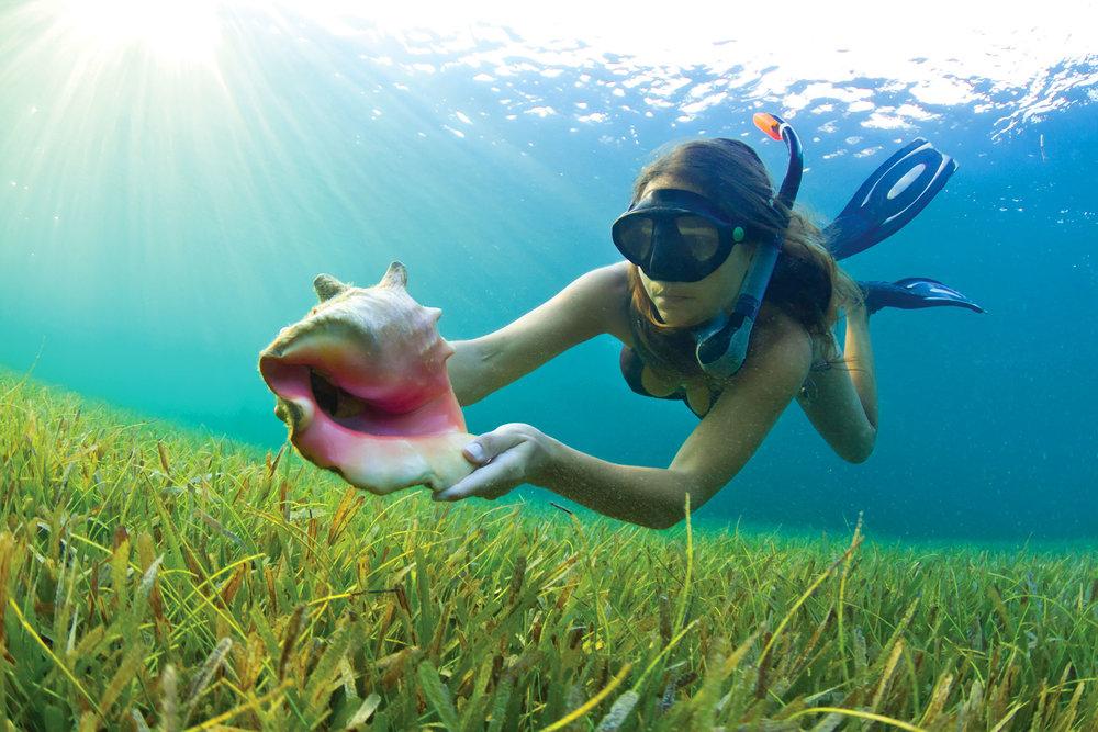 由快艇牽引,加勒比海的滑翔傘運動是一種不錯的嘗試和體驗。
