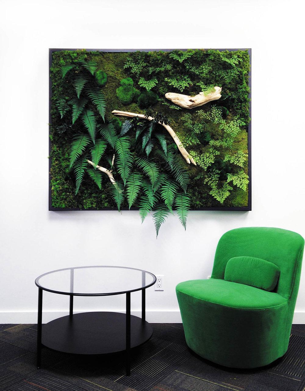 綠色植物裝飾框,無需養護型  bynaturedesign.ca