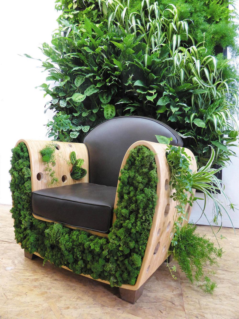 綠色植物裝飾沙發  bynaturedesign.ca