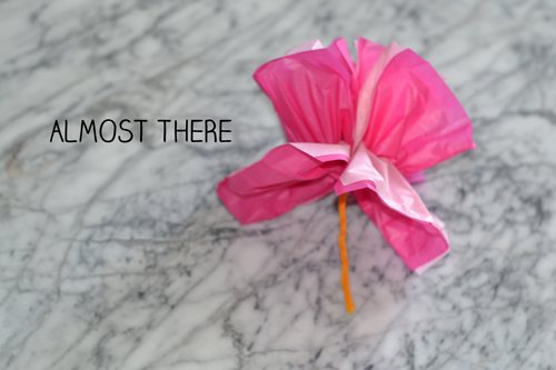 how to tissue paper flowers