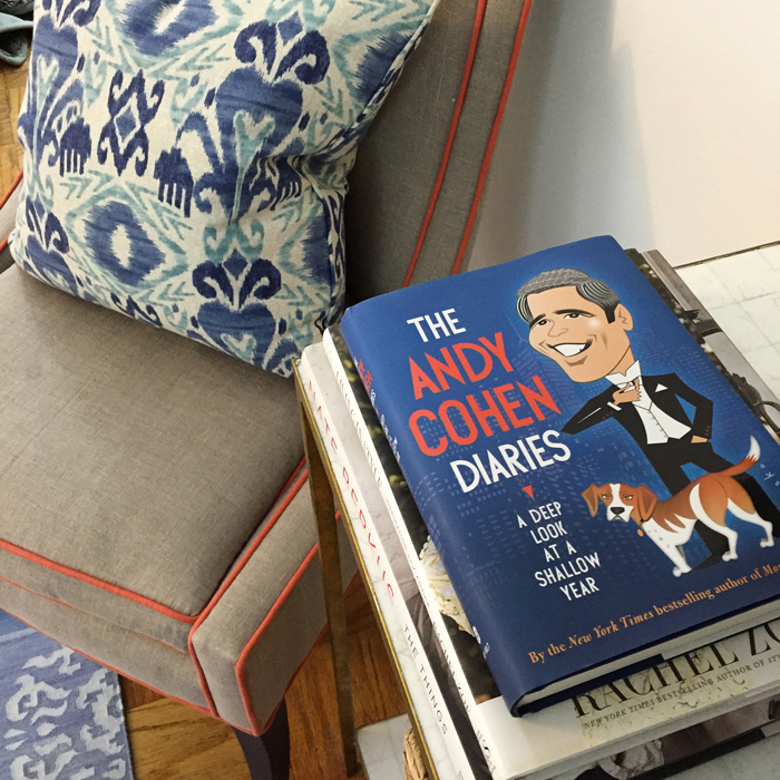 The Andy Cohen Diaries.jpg