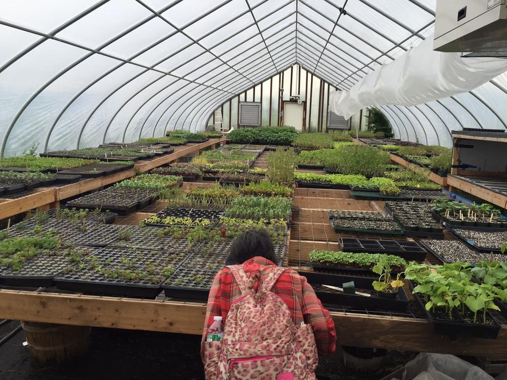2015 growing soils - snug - Melissa Brzuszek 1.JPG