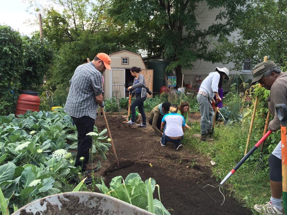 2014.09.13 Taqwa Community Farm Preparing for Winter (22)-1 (1).JPG