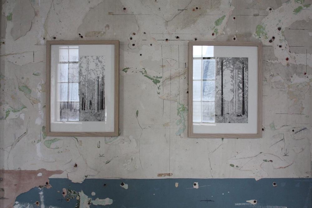 Woodland I and II
