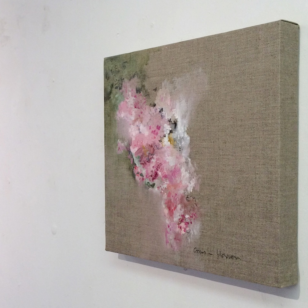 Cornish Blossom, oil paint and charcoal on linen, 30cm x 30cm