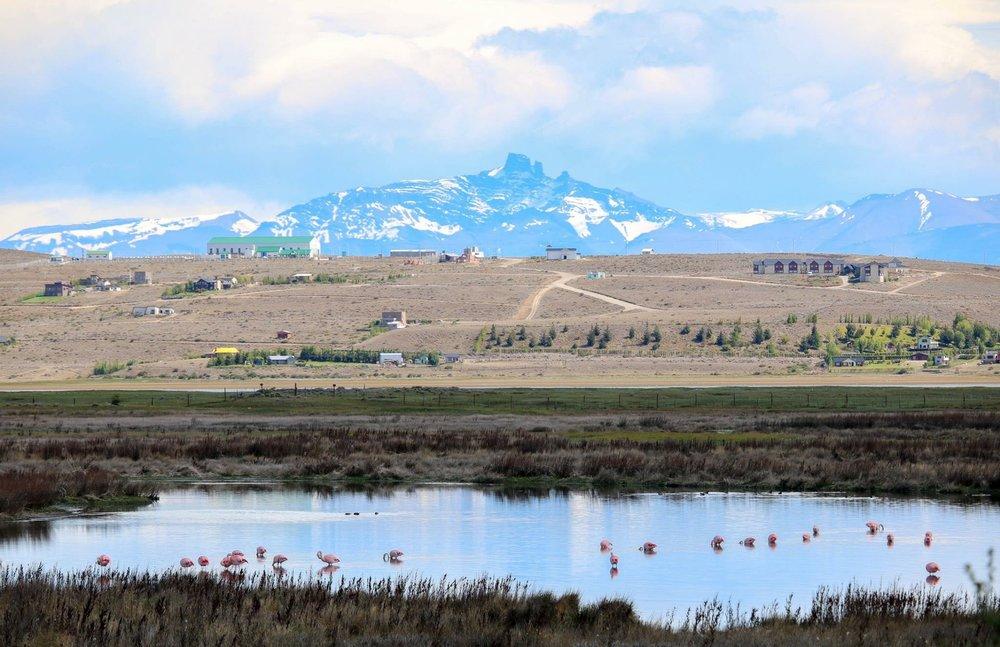 Mountains, Lake, Famingos