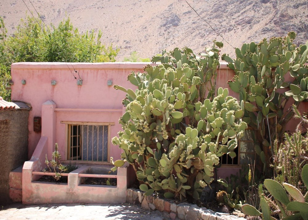 Pink House and Cactus in Pisco Elqui