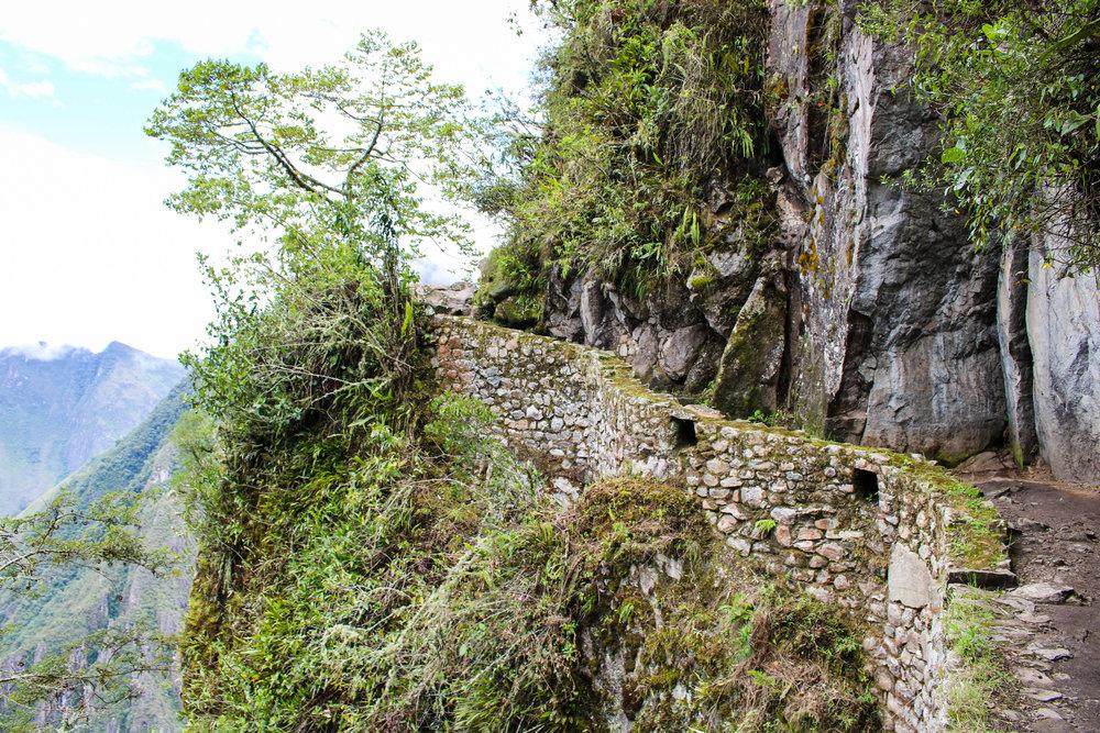 The Trail to the Inca Bridge, Peru
