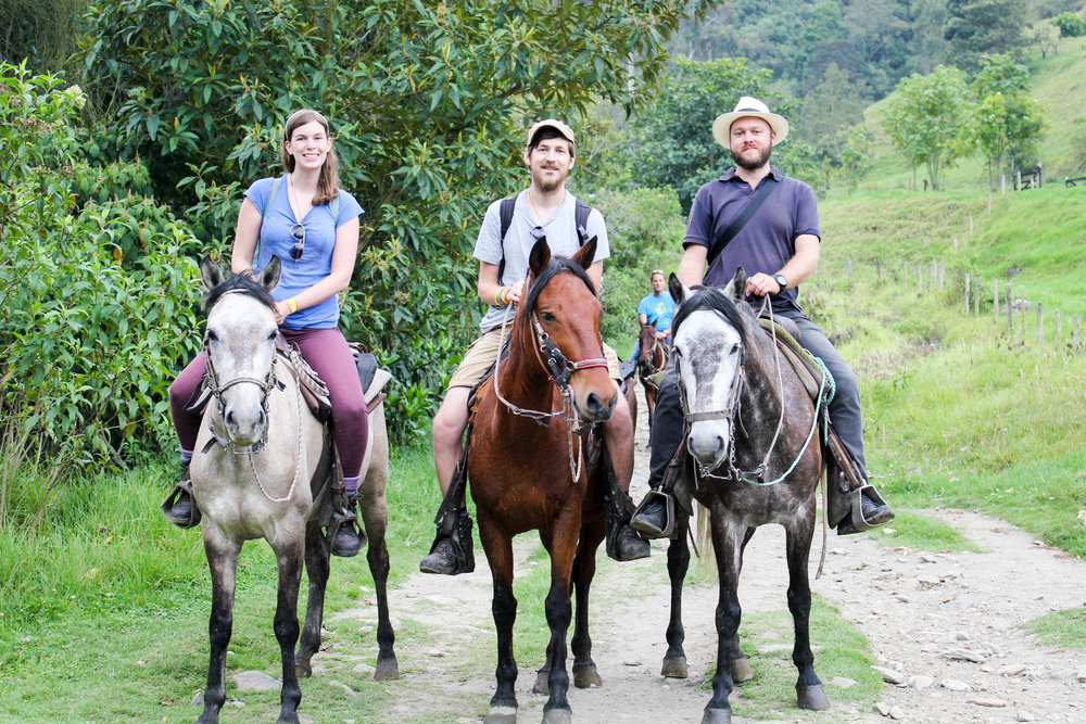 Grey and Bay; the Three of Us Riding in the Cocora Valley, Colombia