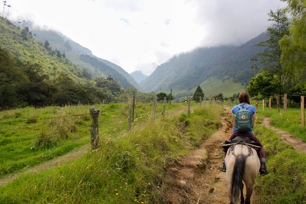 Riding in the Cocora Valley, Colombia
