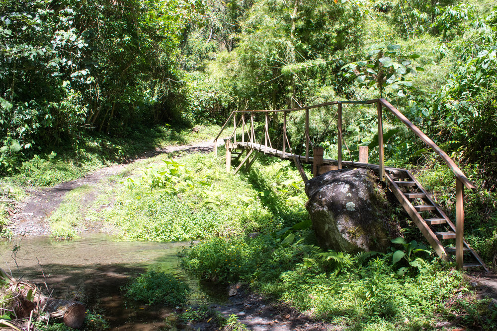 Crossing Bridges on The Pipeline Trail in Boquete, Panama