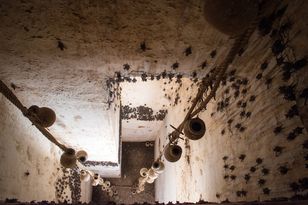 An Ancient Water System and Sleeping Bats at Amber Fort in Jaipur, India