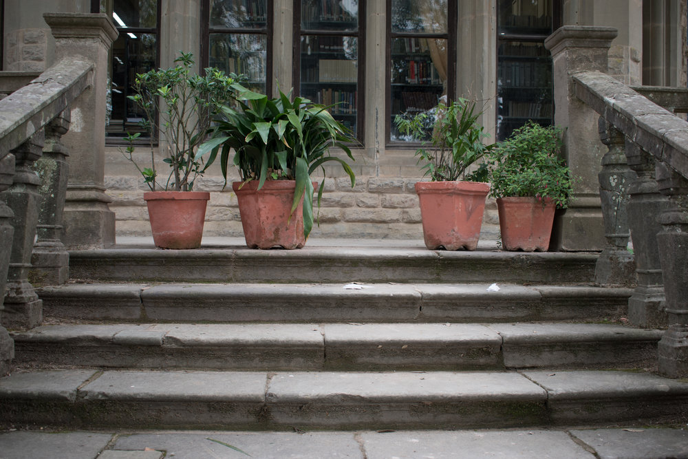Potted Plants At Viceroy Lodge in Shimla, India