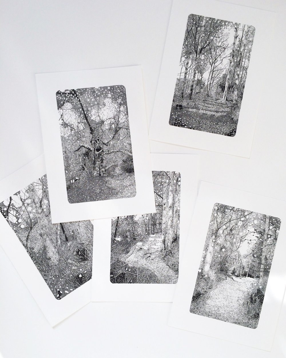 Five Drawings From Claire Leach's 'Woodland Studies' Series Inspired By The Forest Of Dean