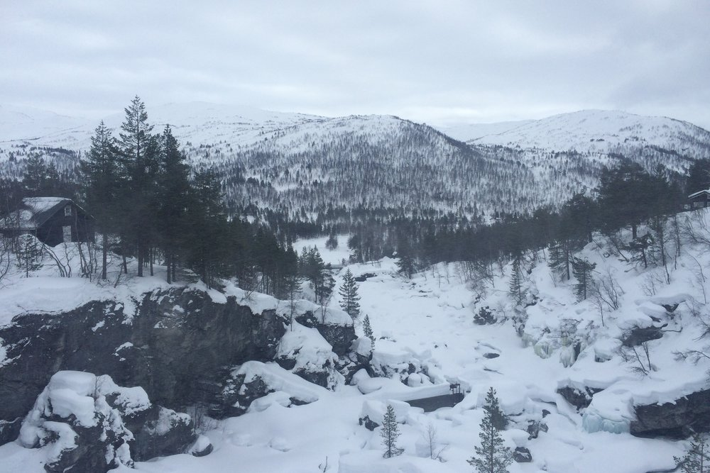 On The Oslo to Bergen Train Journey in Norway