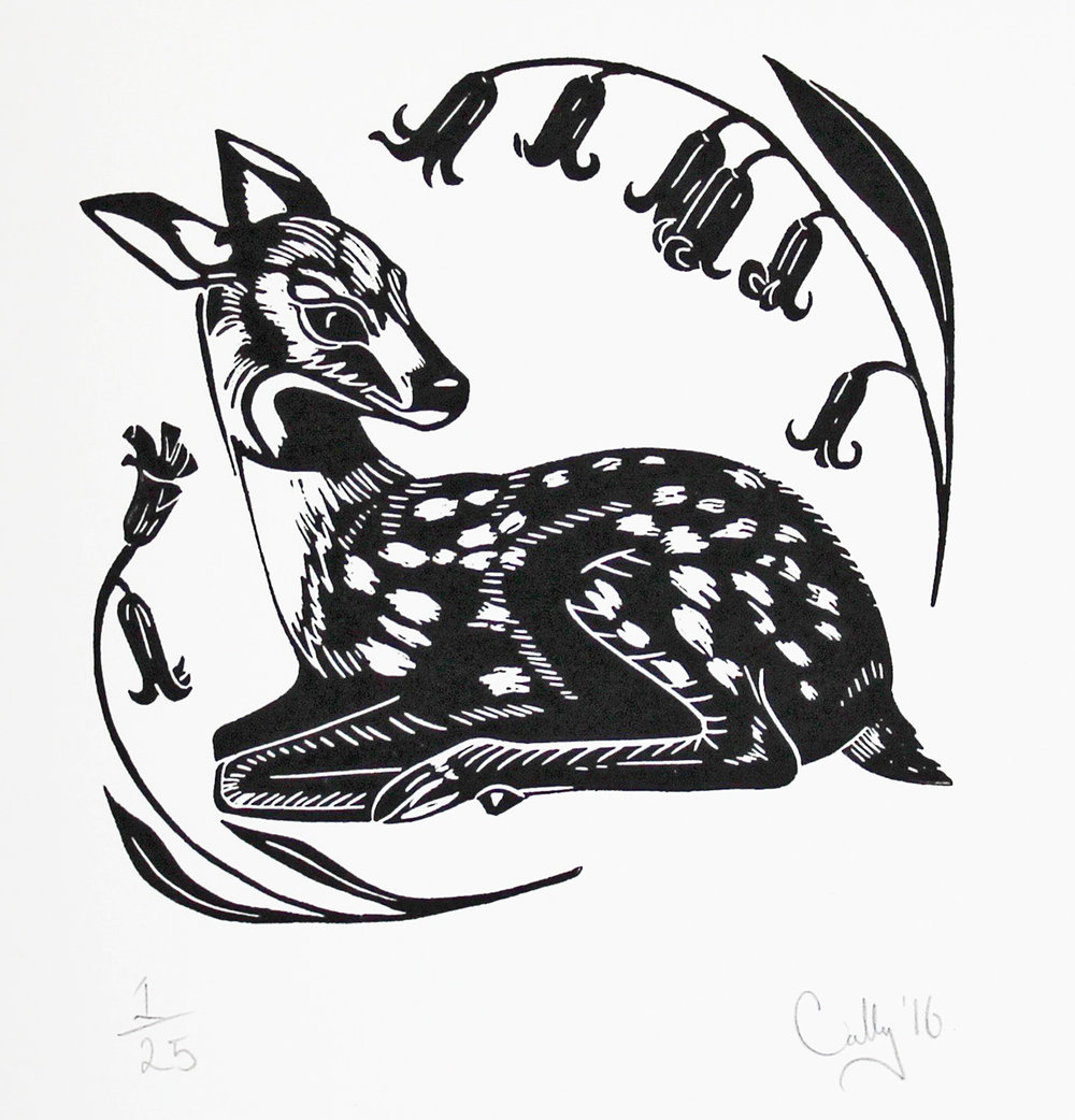 Fallow Deer Print By Cally Conway