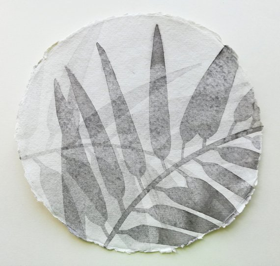 Plantation Palm by Lucy Springall