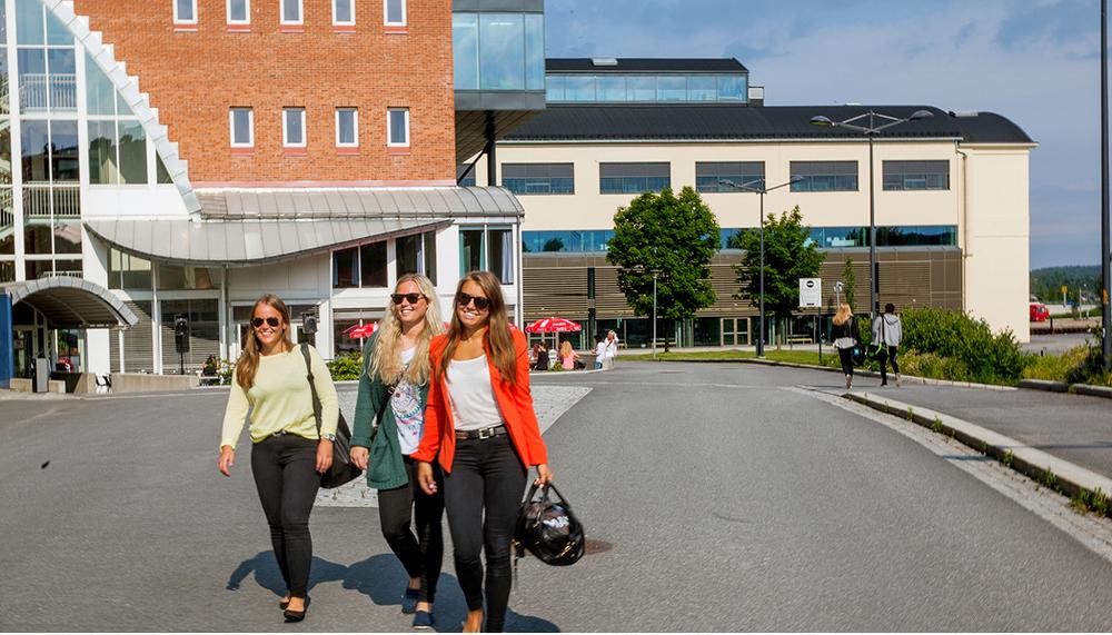 Høgskolen i Østfold avd. helse- og sosialfag