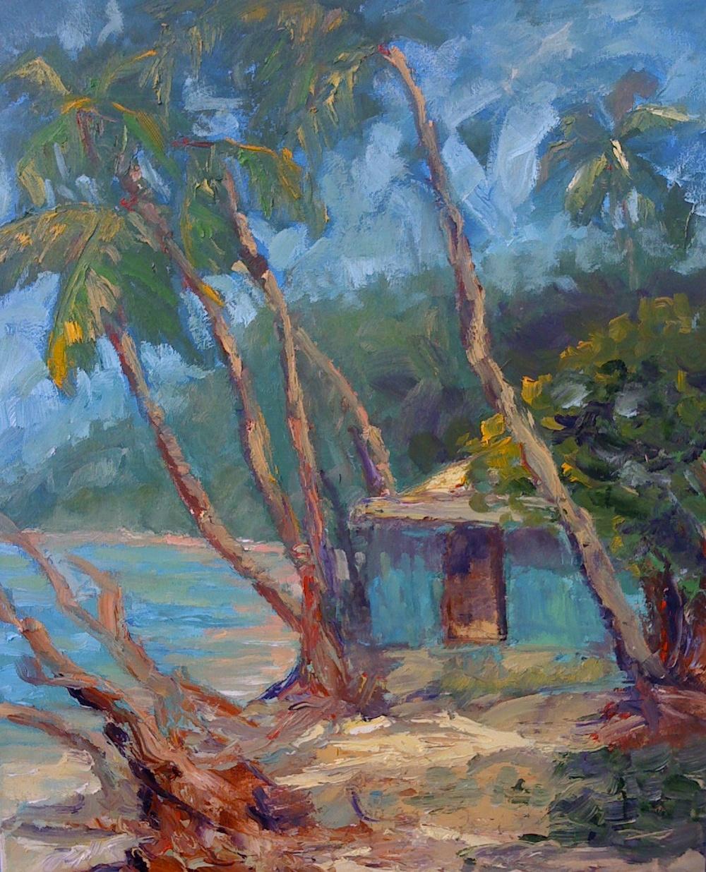 maho Bay.jpg