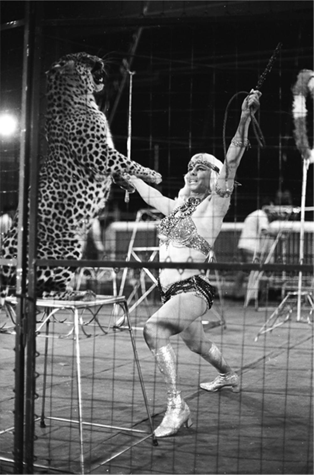 Leopard Women
