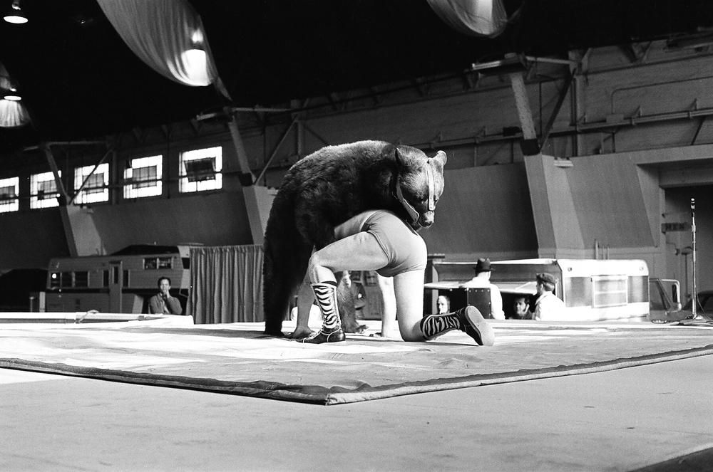 The Bear Wrestler